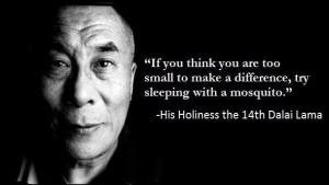hh-dalai-lama-mosquito-quote-e6f2b0cc-sz609x343-animate