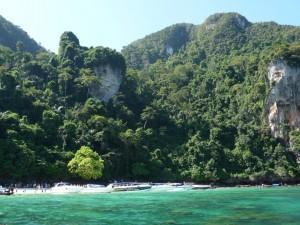 monky beach1 (Medium)